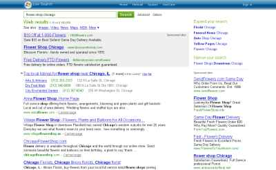 Local Businesses in SERPs